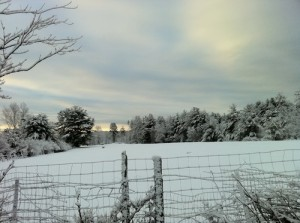 Early morning after snow storm